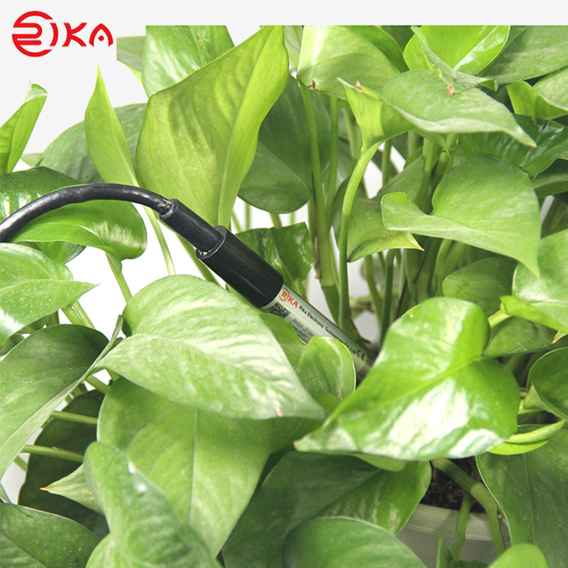 Rika soil humidity sensor factory for detecting soil conditions-Rika Sensors-img