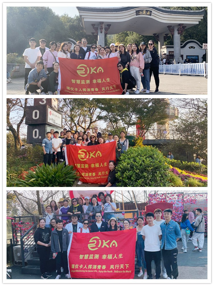news-The company organized a team building activity in Yuelu Mountain-Rika Sensors-img