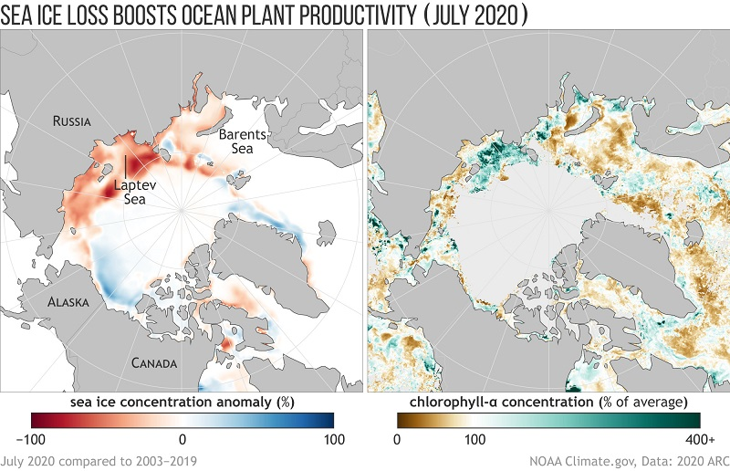 news-Rika Sensors-NOAA Arctic Report Card highlights how sea ice loss and extreme wildfires mark ano