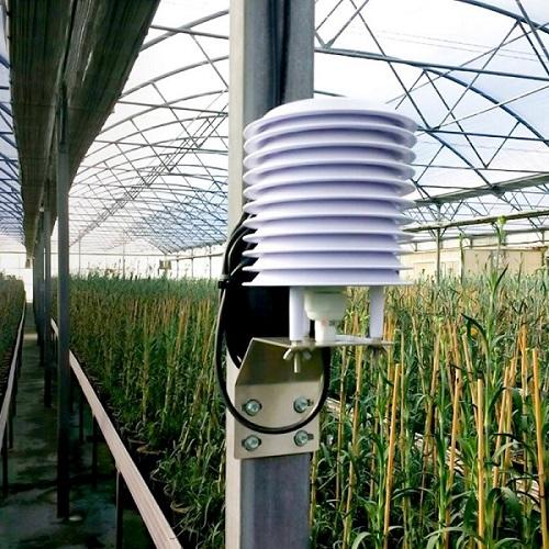 news-Humidity Sensor: Basics, Usage, Parameters and Applications-Rika Sensors-img
